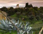 Kolymbethra, storia del giardino ritrovato