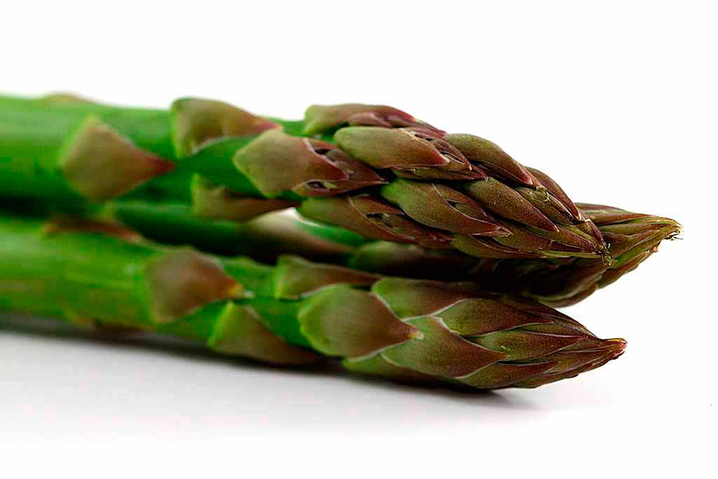 asparagi-terlano