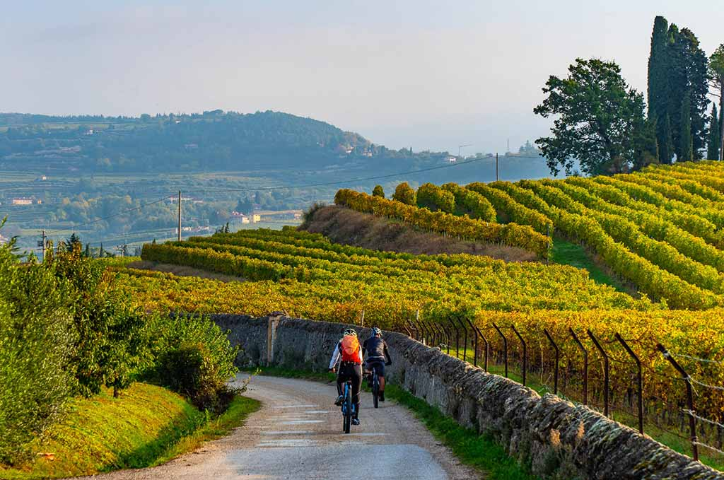bike-tra-i-vigneti-Valpolicella-Veneto