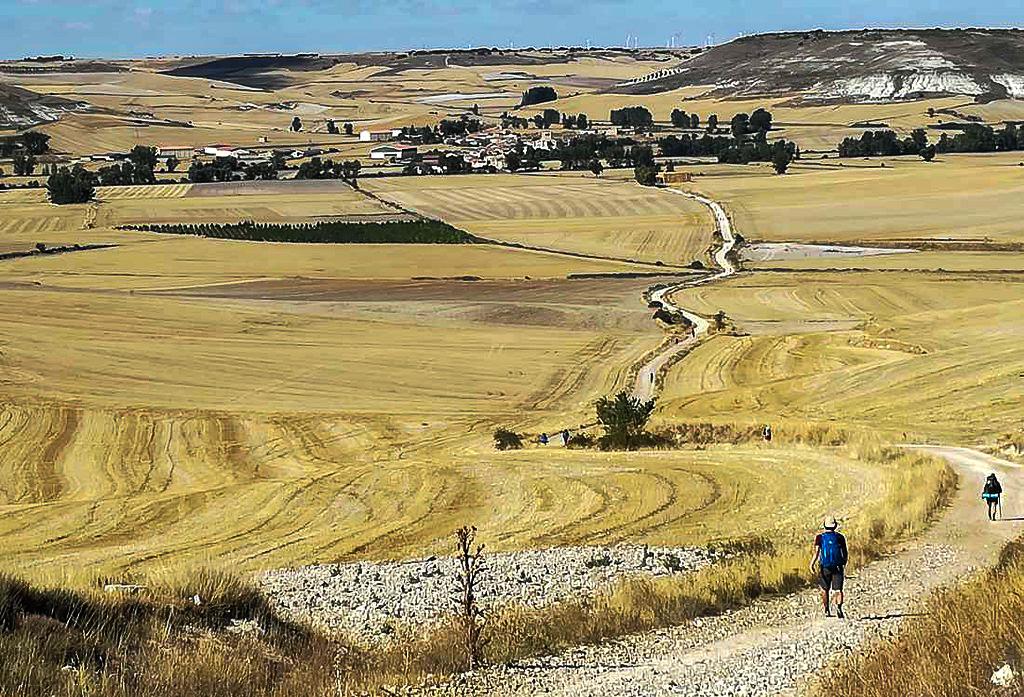 cammino-portoghese-campagna-www.pellegrinaggietours.it