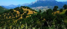 In Sardegna, lungo il Cammino di San Giorgio