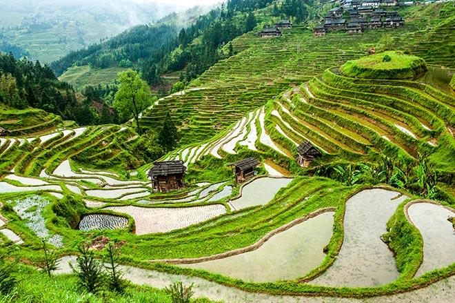 Le risaie disegnano le colline della Provincia del Guizhou ©Daniele Bellucci