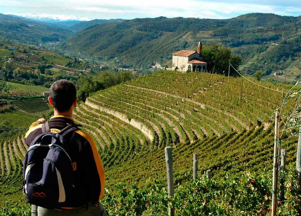escursioni-trekking-langhe-roero-monferrato