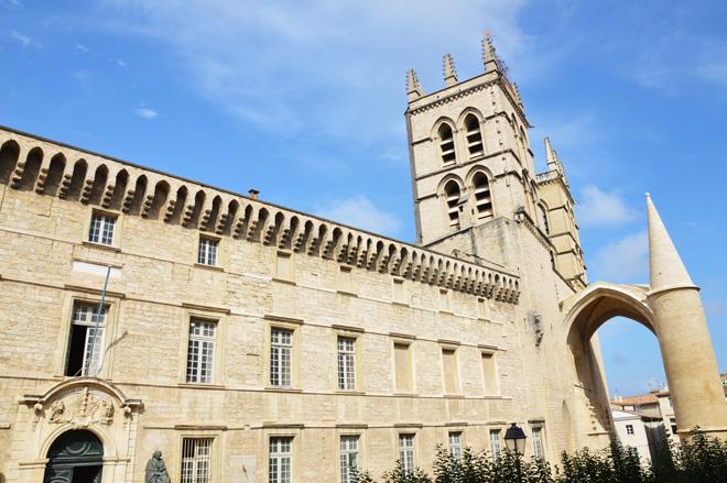 facoltà-medicina-Montpellier