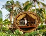 Hotel sugli alberi: tra i rami in tutta eleganza