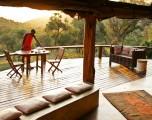 Voglio ritornare bambino: gli hotel sugli alberi più belli al mondo
