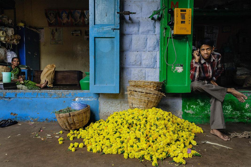 india_mercato_coonor