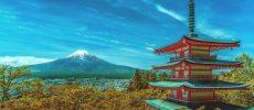 Il Giappone dai mille contrasti