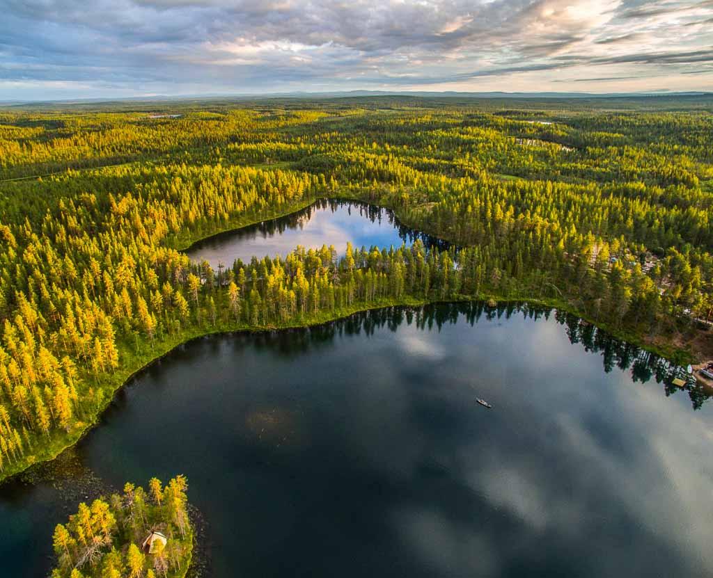 lapponia-cuore-alberi-laghi-foreste-svezia