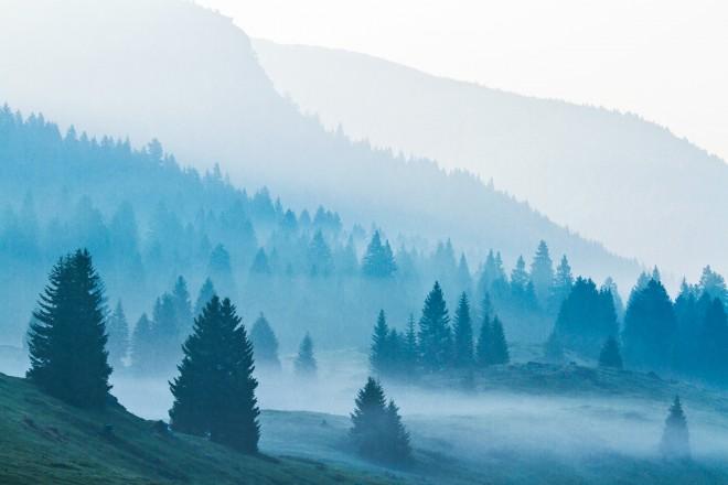 Le brume del mattino a passo coe