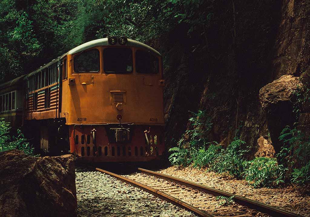 locomotiva-treno-nella-giungla