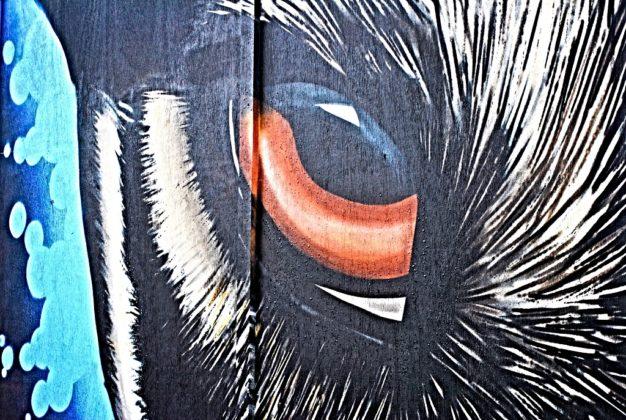 Murales Belfast