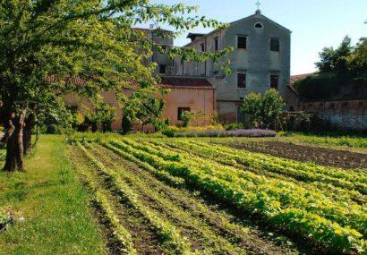 Parchi del Friuli e Orti del Veneto