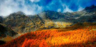 valle-daosta-autunno-larici-rossi